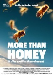 more-than-honey-poster-fr-180[1].jpg